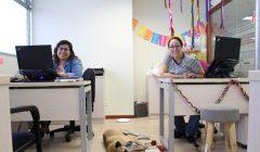 Apolo compartiendo un tiempo con Bertha y su compañera de área ELAMORSIEMPREGANA 240x140 - Perú: Ripley recibe en sus oficinas a los perritos de sus trabajadores