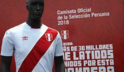 Camiseta selección peruana (4)