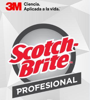 Captura scotch brite - Perú: Scotch-Brite lidera el mercado de esponjas de limpieza