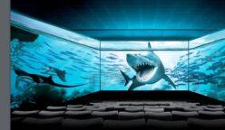 Cineplanet Screen X