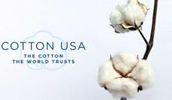 Cotton 1 248x144 - Perú es uno de los países con mejores oportunidades para la exportación e importación de algodón