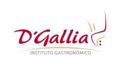 D galia Guia Horeca Peru Retail 240x140 - D'GALLIA