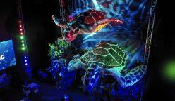 Difusión ReciclArte 2 248x144 - Perú: Wong y Backus crean las tortugas más grandes del país con material reciclado