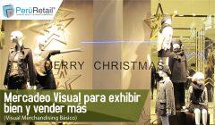 Mercadeo Visual para exhibir bien y vender más 01 240x140 - Mercadeo Visual para exhibir bien y vender más