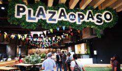 Plaza al Paso3