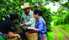 "Starbucks caficultores 240x140 - Starbucks Perú lanza campaña ""Todos Somos Café"" que busca apoyar a productores de café en Jaén"