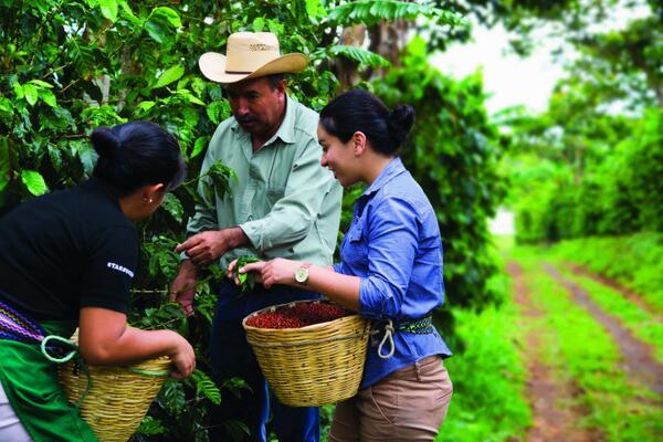 "Starbucks caficultores - Starbucks Perú lanza campaña ""Todos Somos Café"" que busca apoyar a productores de café en Jaén"