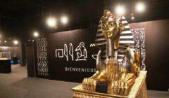 Tesoros de Egipto Plaza Norte (18)