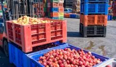 agro logistica principal 240x140 - ¿Cuáles son los desafíos para mejorar la competitividad en la cadena logística agroexportadora?