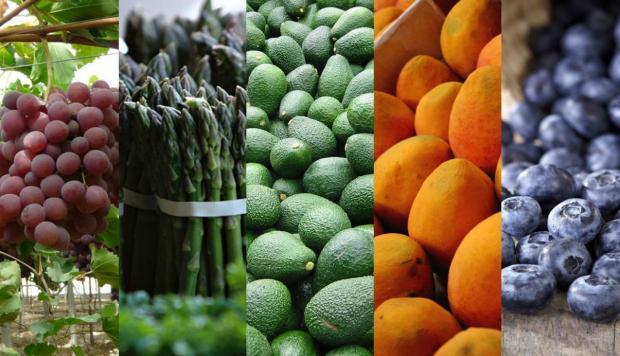 agroexportaciones peru