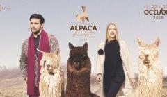 alpaca fiesta 240x140 - Perú: Alpaca Fiesta 2018 prevé generar US$ 8 millones en rueda de negocios