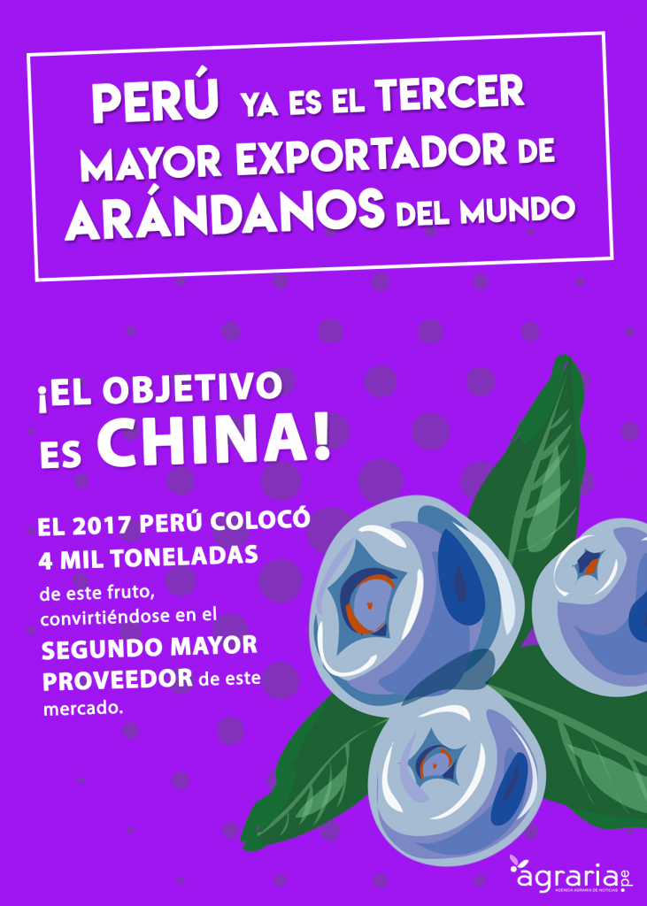 arandanos 731x1024 - Perú muestra productos novedosos en feria de alimentos de Taiwán