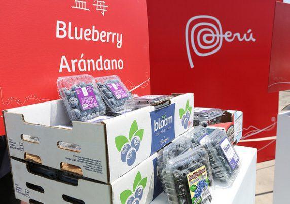 arandanos - Walmart incrementará volúmenes de compras de productos agrícolas peruanos