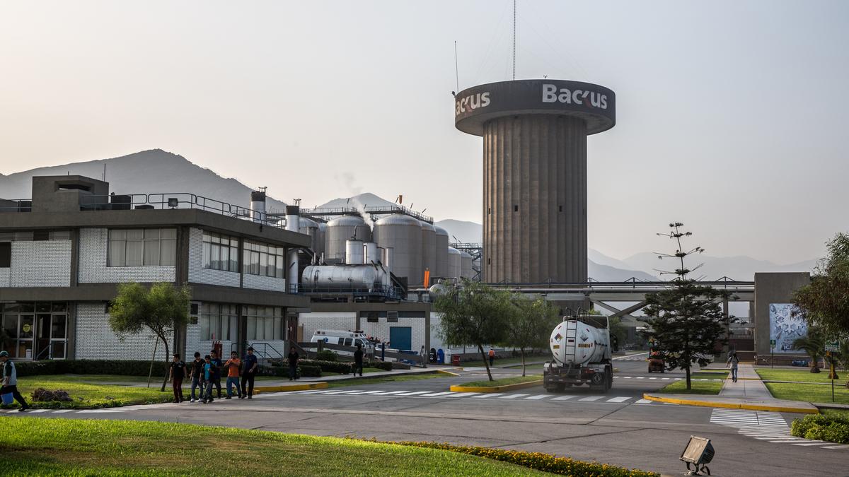 backus - Ganancias netas de Backus bajan 0.5% consiguiendo S/ 256.5 millones