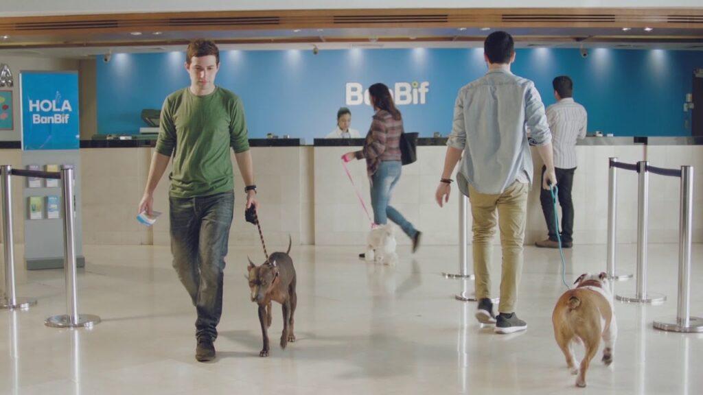 banbif pet perú retail 1024x576 - BanBif realizará este sábado concurso abierto para transformar la banca