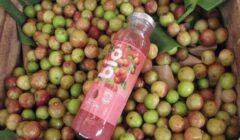 bio aje perú retail 240x140 - Grupo AJE lanzará marca de bebidas Bio en Ecuador