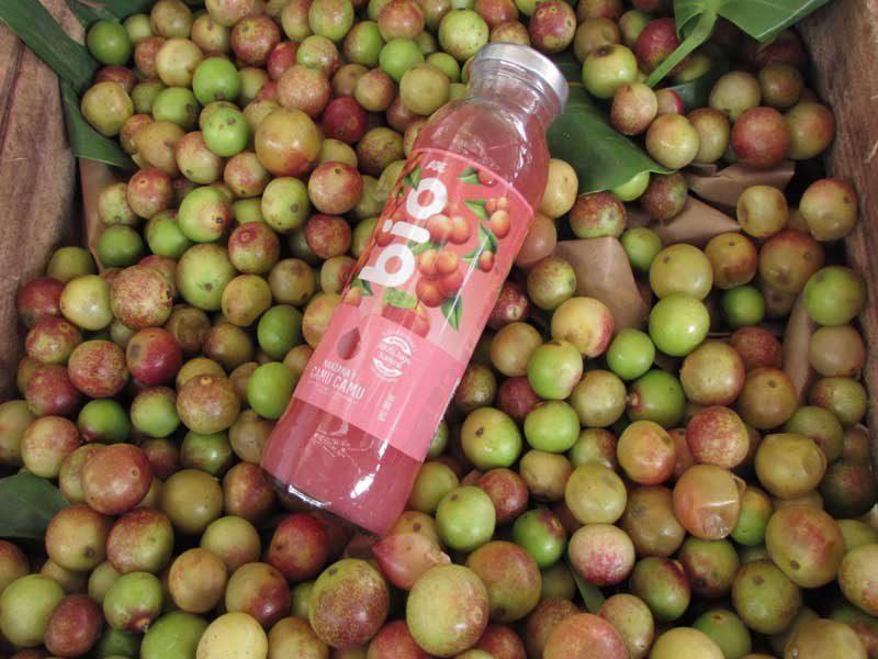 """bio aje perú retail - AJE es nombrado """"Aliado de la conservación"""" por su línea de bebidas naturales"""