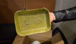 bioplant 2 248x144 - Peruanos crean platos biodegradables a base de hojas de plátano