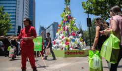 bolsas costanera 816 248x144 - Greenpeace arma el árbol de Navidad ecológico más grande de Chile