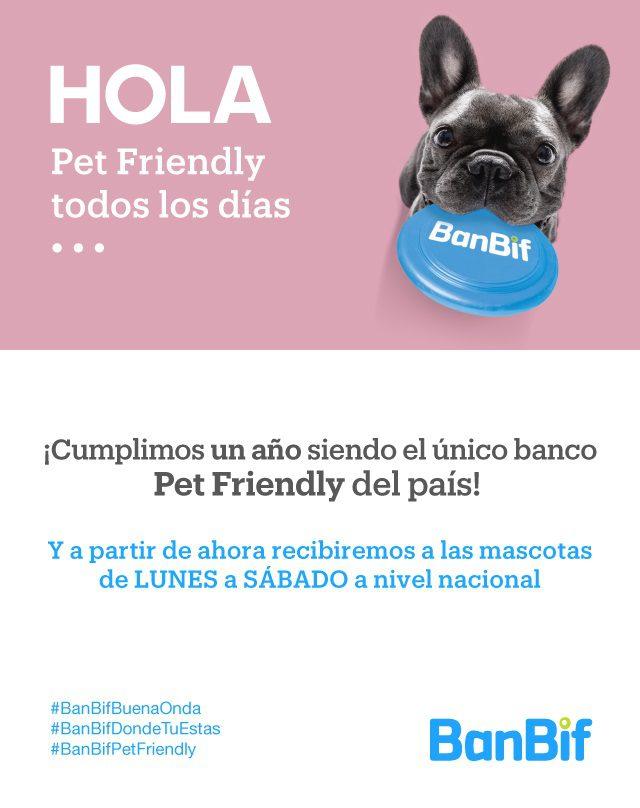 """comunicado Banbif - Perú: BanBif convierte todas sus sucursales en """"Pet friendly"""""""