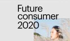 consumidor 20202