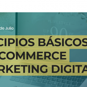 curso online ecommerce y marketing digital 300x300 - PRINCIPIOS BÁSICOS DE E-COMMERCE & MARKETING DIGITAL