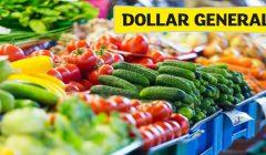 dollar general 1 240x140 - Dollar General venderá productos frescos en 450 de sus tiendas