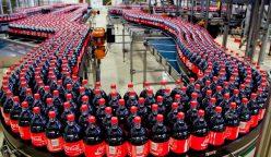 embotelladora coca cola andina