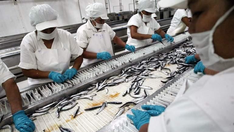 ¿La situación de China perjudicaría el desempeño de las exportaciones pesqueras?