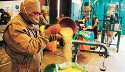 exportaciones quinua bolivia 248x144 - Bolivia acumula un déficit de US$747 millones en comercio exterior