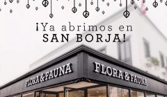 flora y fauna - san borja