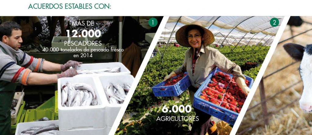 frescos peru retail 1024x444 - Mercadona desarrolla una nueva estrategia de aprovisionamiento en España