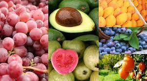 fruta exportaciones