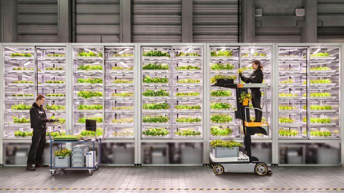 granja CEA retail - Walmart invertirá en granjas verticales