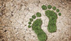 huella de carbono este 240x140 - Huella de carbono: qué es y cuáles son los beneficios de implementarlo en tu empresa