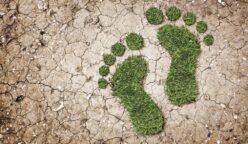 huella de carbono este 248x144 - Huella de carbono: qué es y cuáles son los beneficios de implementarlo en tu empresa