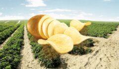 inka chips Perú Retail 240x140 - Bolivia es el principal mercado de snacks peruanos con el 73% de participación