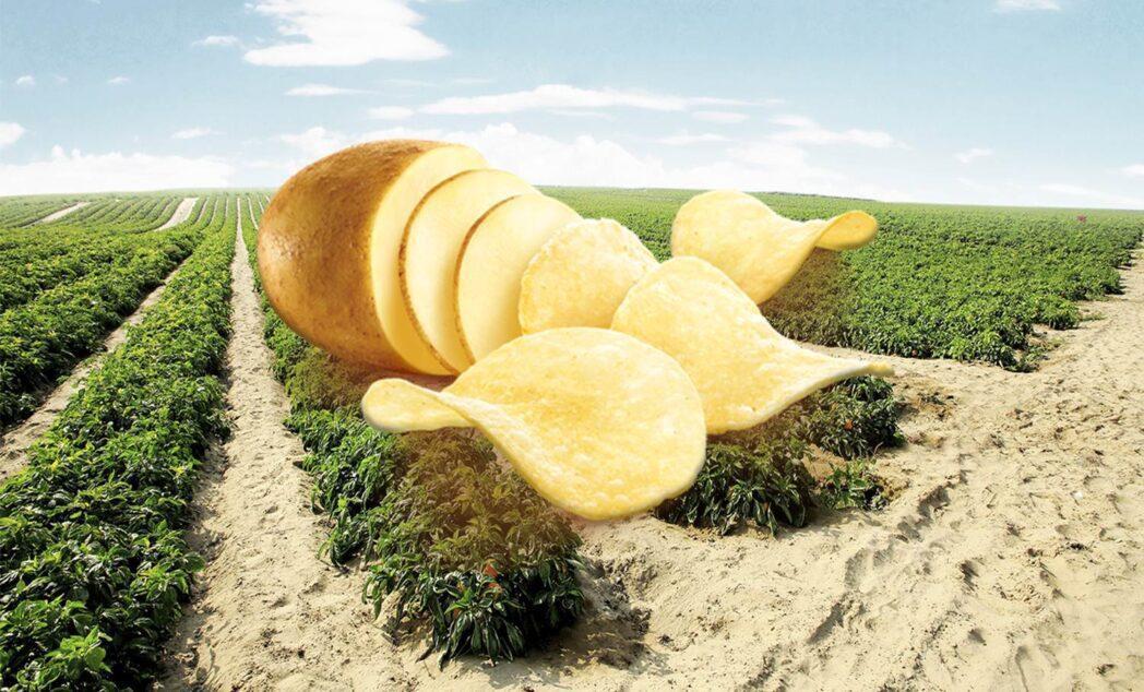 """Conoce el snack peruano que ha invertido US$200 mil para ser """"libre de octógonos"""""""