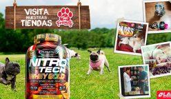 "lab nutition pet 248x144 - Tiendas Lab Nutrition son ahora ""Pet Friendly"""