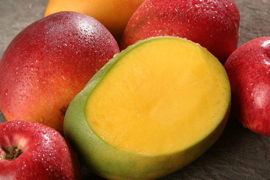 exportación del mango peruano