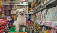 mascotas mercado perú retail 240x140 - Perú: El impacto de las mascotas en casi la mitad de los hogares peruanos