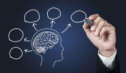 neurociencia 248x144 - La importancia de la neurociencia en el comercio moderno