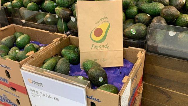 palta avocado