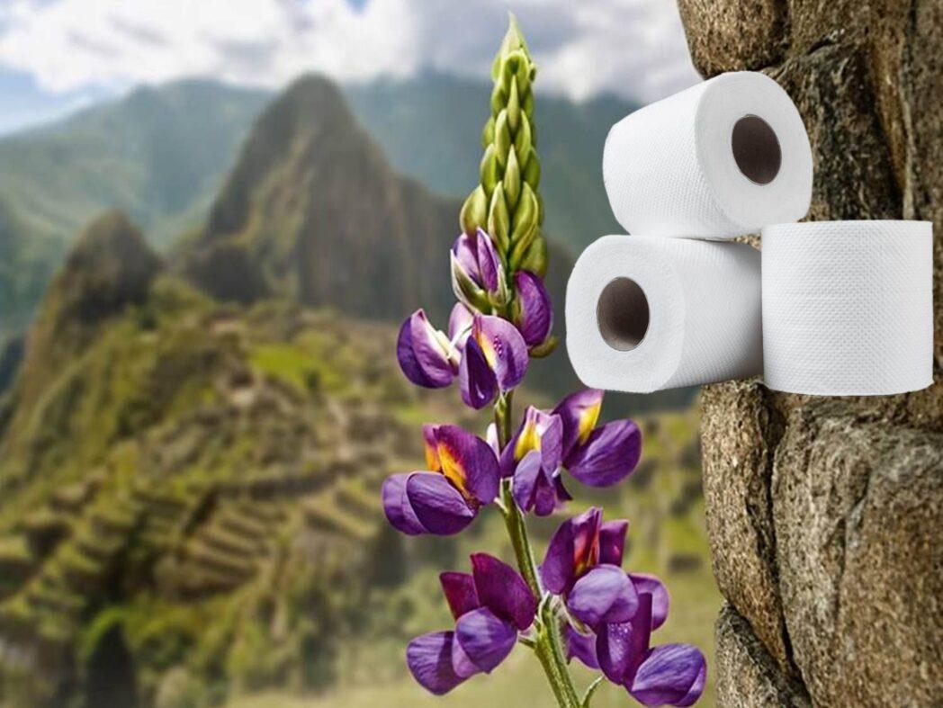 papel higienico aromas perú retail - Kimberly-Clark lanzó nuevo papel higiénico Suave con fragancias inspiradas en flores del Perú
