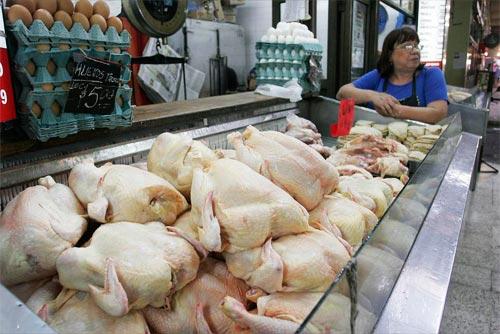 pollo consumo perú retail - Bolivia ocupa el segundo lugar en consumo de pollo en Latinoamérica