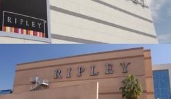 ripley 2017