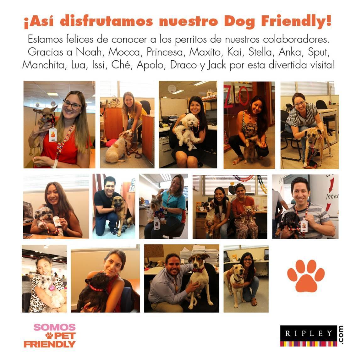 ripley pet friendly 1 - Perú: Ripley recibe en sus oficinas a los perritos de sus trabajadores