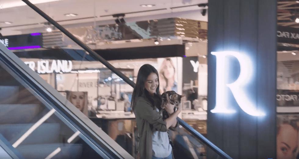 ripley pet friendly 2 - Perú: Ripley vuelve a recibir en sus oficinas a las mascotas de sus colaboradores