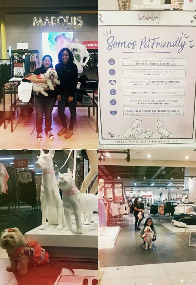 ripley pet friendly - Ripley se convirtió en la primera departamental 'pet friendly' del Perú