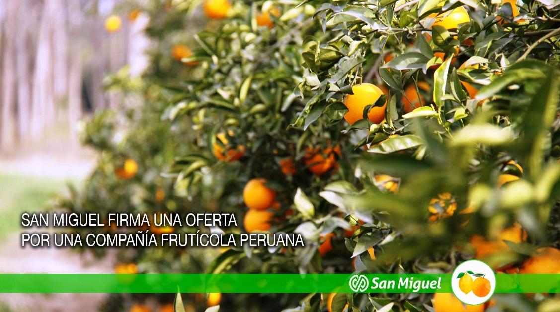 san miguel arg peru - Firma argentina compra empresa peruana Agrícola Hoja Redonda